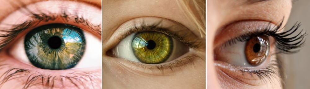 25 Off Contact Lens Coupons Discounts Rebates November 2020