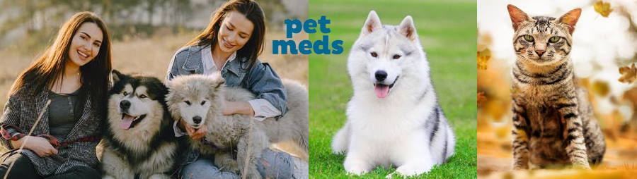 Pet Prescription Meds
